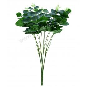 Ramo de hojas de ficus