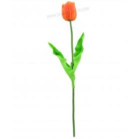 Vara larga de tulipán