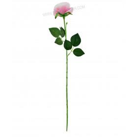 Vara larga de rosa