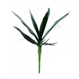 Ramillete de hojas de orquídea