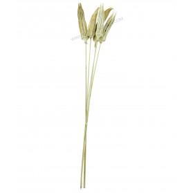 Vara flor seca
