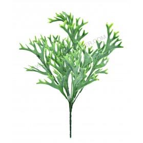 Ramo de algas