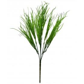 Ramo de algas verdes
