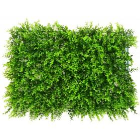 Plancha de eucaliptus