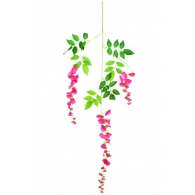 Rama de hojas con flores de virginia
