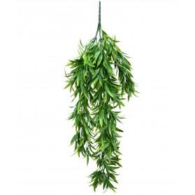 Ramo de hojas colgantes del sauce