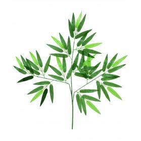 Rama de hojas de bambú. Precio €/U
