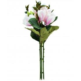 Ramo de magnolia