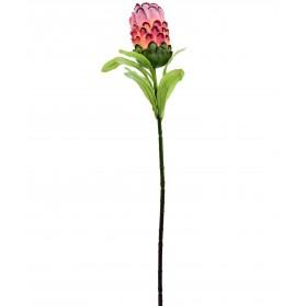 Vara de flor de la piña
