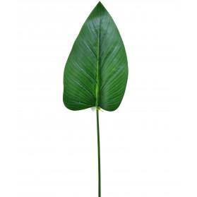 Hoja mediana de flor del loto