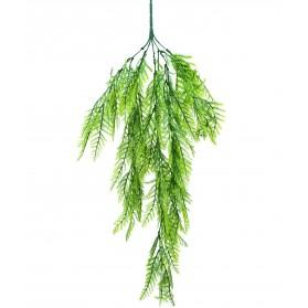 Ramo colgante asparagus plumosus